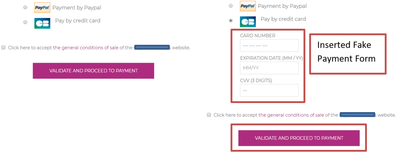 Side by side screenshot of checkout page with the fake form