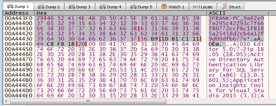 Figure 5.1 – The first packet to the C2 server before encrypted