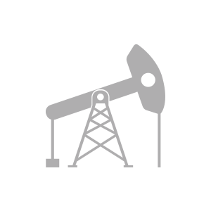 Major Oil and Gas Company