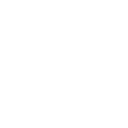 Fortiswitch cloud icon