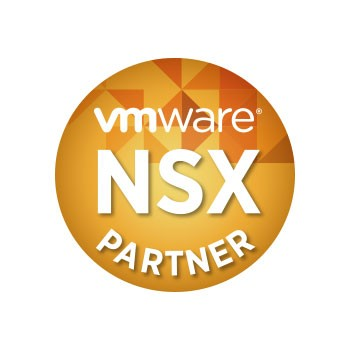 Security for VMware NSX